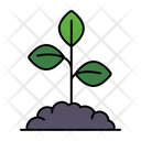 Sprouting plant in soil Icon
