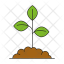 Plant in Soil Icon