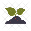 Sprout in soil Icon