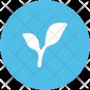 Plant Growth Gardening Icon