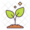 Ecology Plant Tree Icon
