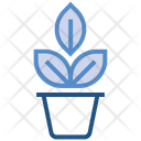 Plant Gardening Sprout Icon