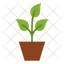 Plant Ecology Environment Icon