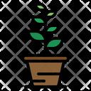 Botanic Gardening Plant Icon