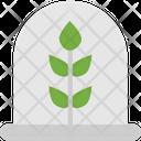 Plant Flower Plant Nature Icon
