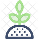 Sproutm Plant Sprout Icon