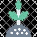 Plantm Plant Farming Icon