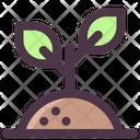 Spring Plant Green Icon