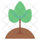 Ecology Plant Environment Icon