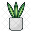 Potted Plant Flowering Plant Houseplant Icon
