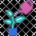 Plant Leaf Nature Icon