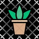 Plant Home Decoration Icon