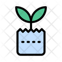 Plant Growth Agriculture Icon