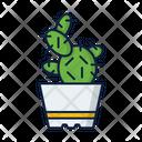 Plant Eco Pot Icon