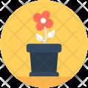 Plant Flower Pot Icon