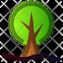 Plant Ecology Tree Icon