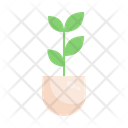 Plant Tree Green Icon