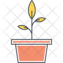 Plant Green Grow Icon