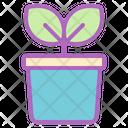 Plant Pot Ecology Icon