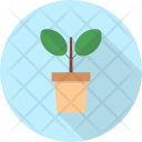 Plant Property Interior Icon