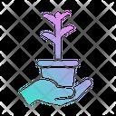 Plant Leaf Ecology Icon