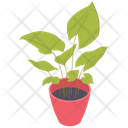 Plant Pot Leaves Icon
