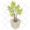Plant Pot Houseplant Icon