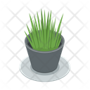Plant Pot Grass Icon