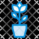 Green Eco Plant Icon