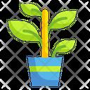 Plant Botanic Gardening Icon