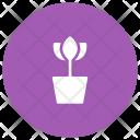 Plant Green Eco Icon