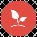 Plant Green Garden Icon