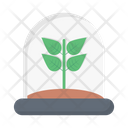 Plant Leaf Observatory Icon