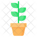 Plant Sprout Pot Icon