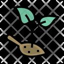Plant Seedlings Fertilizer Icon