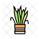 Plant Drying House Icon