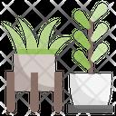 Plant Pot Gardening Icon