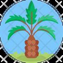 Plant Tree Ecology Icon
