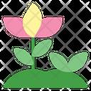 Plant Landscape Flower Icon