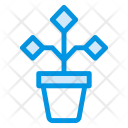 Plant Growth Nature Icon