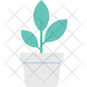 Plant Pot Potted Icon