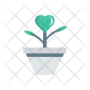 Plant Nature Growth Icon