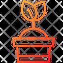 Plant Eco Tree Icon