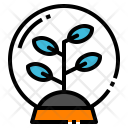 Plant Tree Nature Icon