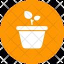Plant Leaf Grow Icon