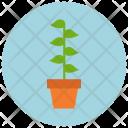 Plant Leaf Pot Icon