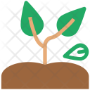 Plant Agricultural Ecology Icon