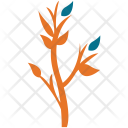 Plant Small Leafy Icon