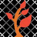 Generic Plant Leafy Icon