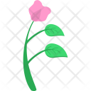 Plant Grow Rose Icon